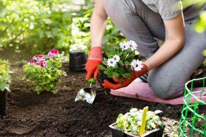Checkliste für Ihre Gärtnerwerkstatt – fehlt noch was?