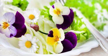 Essbare Blüten – schön anzusehen und lecker
