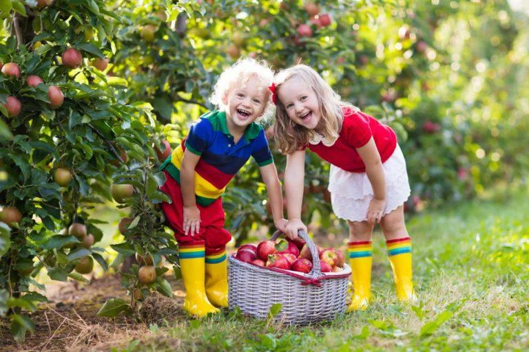 Kreative Apfel-Ideen für Kinder