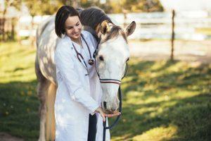 Homöopathische Komplexmittel zur Anwendung am Pferd