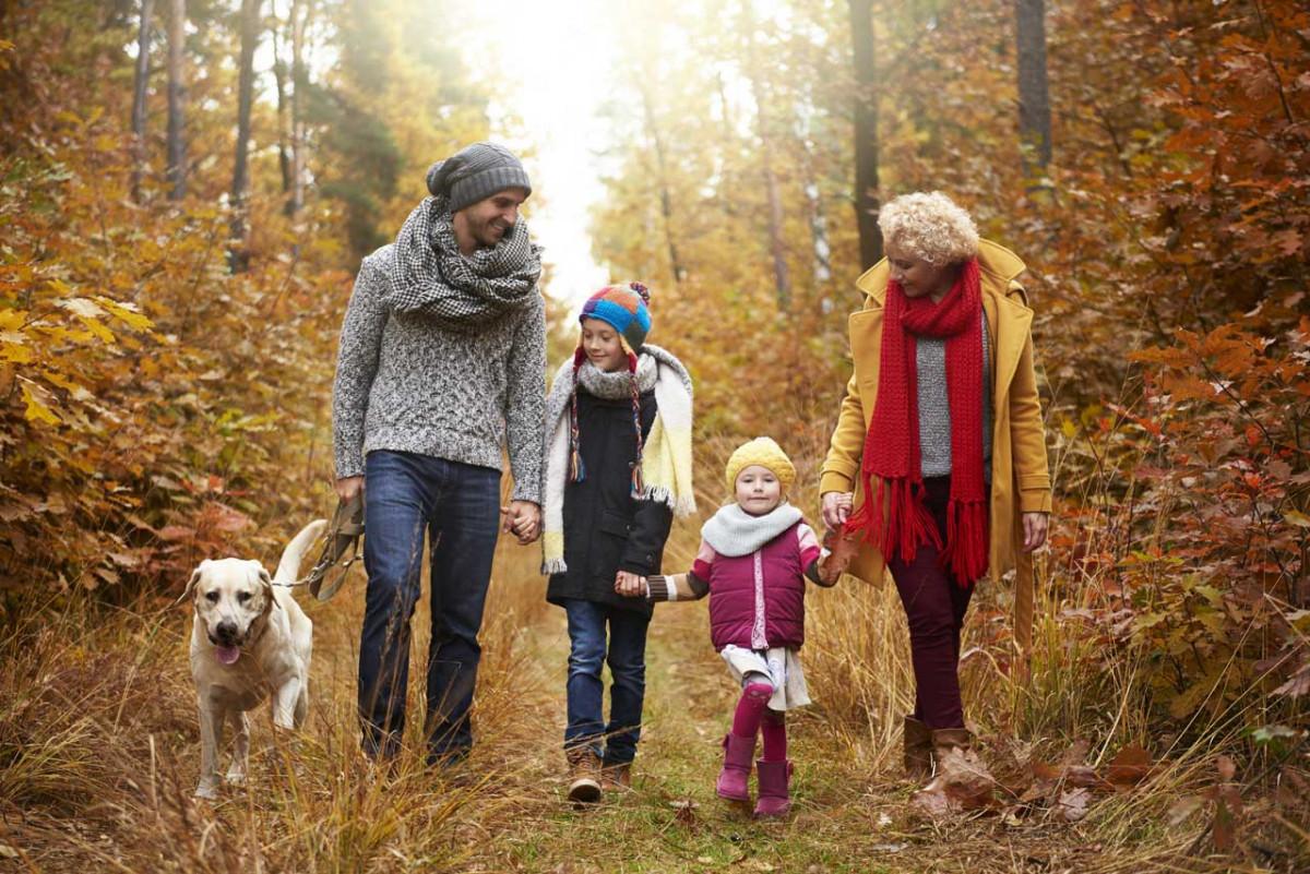 Ein Tag voller Abenteuer für Kinder im Wald