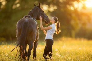 So können Sie das Immunsystem bei trägen Pferden stärken