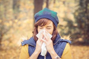 Atemweginfekte mit Vitalpilzen behandeln