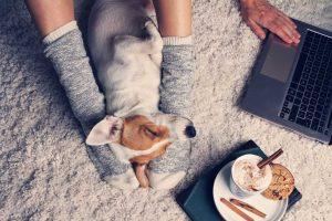 Tipps zum Wohlfühlen an kalten Wintertagen