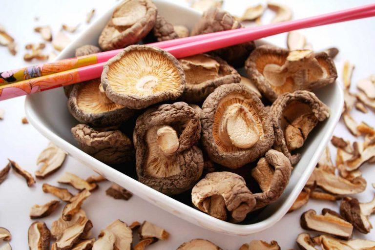 So können Sie mit Vital-Heil-Pilzen den Bluthochdruck behandeln