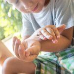 Kinder beobachten Tiere im häuslichen Umfeld