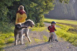 Preiswerte Wochenendausflüge mit Kindern: Ideen für jede Jahreszeit