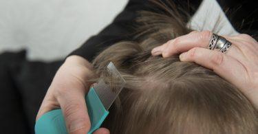 Mein Kind hat Kopfläuse - Was mache ich?