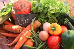 Wie gesund sind industriell hergestellte Bio-Lebensmittel wirklich?