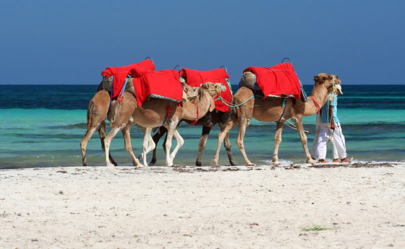 Tunesien & Djerba, die südlichste aller Mittelmeerinseln
