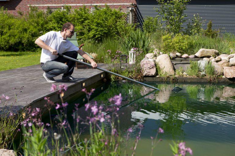Schwimmteich selbst bauen: Was sollten Sie beachten?