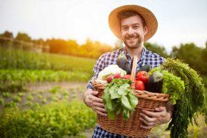 Wann lohnen sich Bioprodukte wirklich?