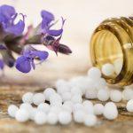 Nutzen Sie das homöopathische Schmerzmittel für Katzen – Zincum metallicum