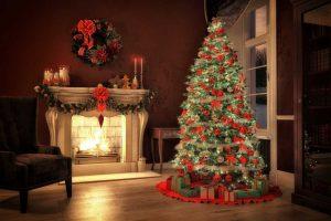 Tipps zum Kauf und Pflege des Weihnachtsbaums