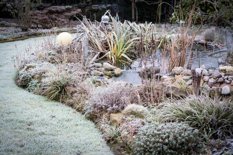 Was Sie beachten müssen, damit Ihr Gartenteich winterfest ist