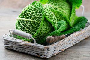 Fleischlos glücklich: So gelingen Ihnen vegetarische Wirsingrouladen
