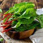 Mangoldsalat als Vorspeise passt zu vielen winterlichen Hauptgerichten