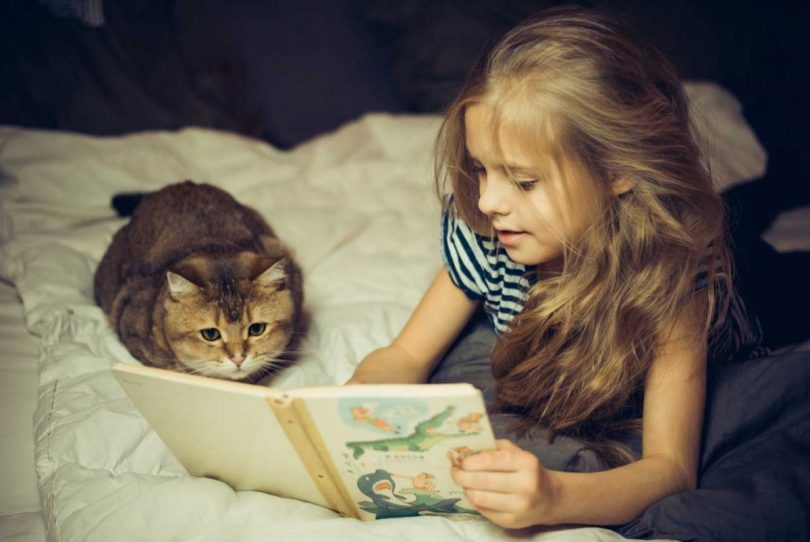 Katzenhaarallergie bei Kindern - das müssen Sie wissen