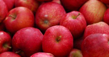 Wieso Sie jeden Tag einen Apfel essen sollten