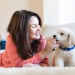 Nutzen Sie diese Tipps für die richtige Unterbringung für Ihren Hund