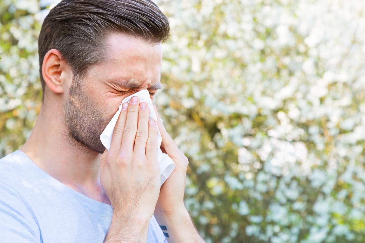 So helfen Vitalpilze gegen eine Pollenallergie