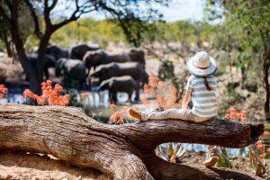 Wie Sie Ihre Reiseapotheke für Ihren Afrika-Urlaub optimal ausstatten
