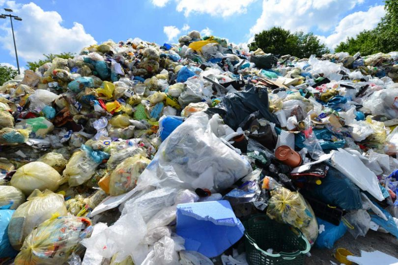 Müll reduzieren: Nutzen Sie diese Tipps