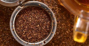 Rotbuschtee: Herkunft, Zubereitung und Wirkung