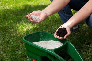 In 4 Schritten den Rasen kalken: Das sollten Sie beachten