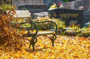 Trauersprüche für Karten: So bekunden Sie einfühlsam Ihr Beileid