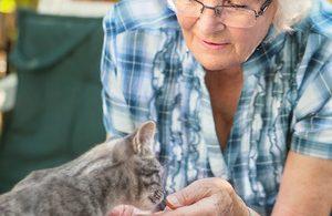 Welche Haustiere sind für Senioren geeignet?