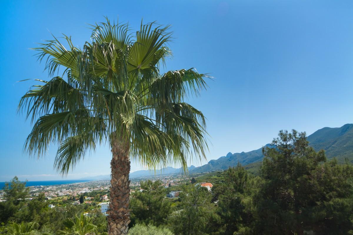 Nordzypern: Eine faszinierende Rundreise