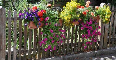 Gartenzaun pflegen: So klappt es bei den verschiedenen Varianten