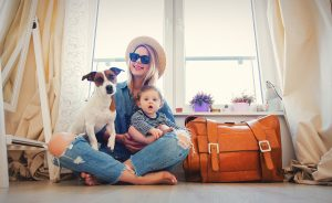 Verreisen mit Haustieren: Das gilt für Bus, Bahn und Flugzeug