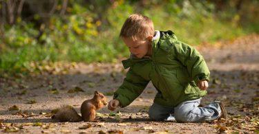 So entdecken Kinder die Tiere in der Natur mit mehr Begeisterung