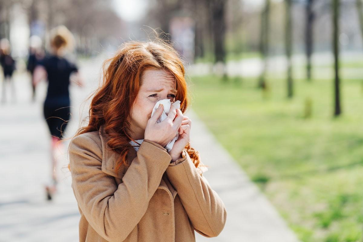 Pollenallergien im Griff dank Android-App