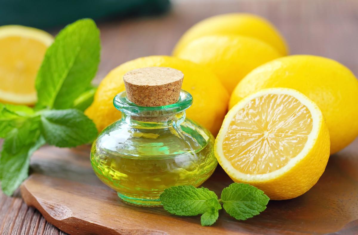 Zitronenöl - Parfum, Arzneimittel und Gewürz