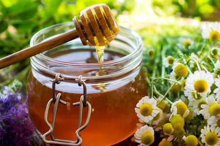 Honig als Medizin – welche Sorten sind geeignet?