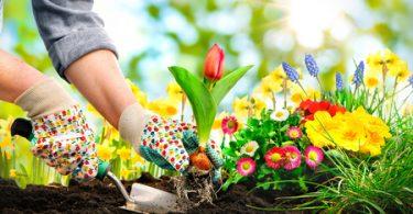 Streit um Gartennutzung: Gericht darf Regelung treffen