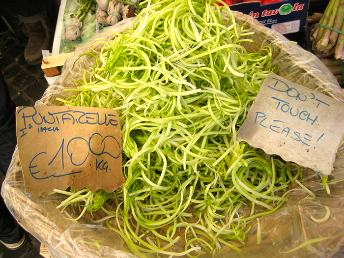 Puntarelle – So kochen Sie das bittere Blattgemüse aus Rom richtig!