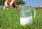 Milch-Mythen: Ist A2-Milch wirklich gesünder?