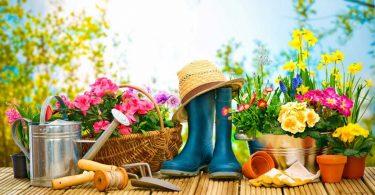 So verschönern Sie Ihren Garten auf kreative und günstige Art und Weise