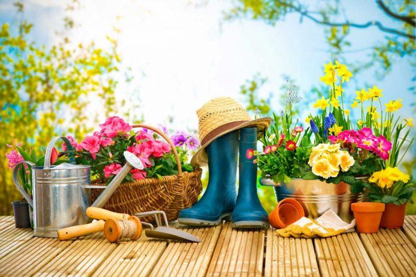 So Verschonern Sie Ihren Garten Auf Kreative Und Gunstige Art Und
