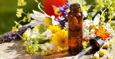 Homöopathie: Ganzheitliche Therapie bei Gallensteinen