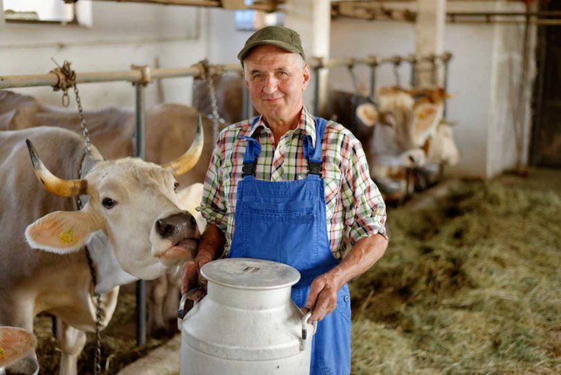 Milch als Blutdrucksenker – der Wirkung der Milchproteine auf der Spur