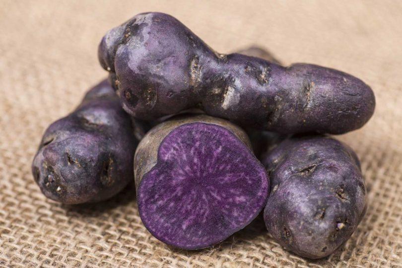 Bunt und gesund: Blaue Kartoffeln senken den Blutdruck