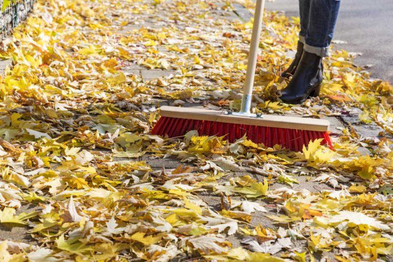 Rutschiges Herbstlaub: Achtung – Vermieter haften für Ihre Mieter!