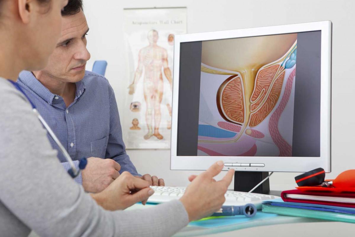 Eine Wachstumsstory: Die Prostata