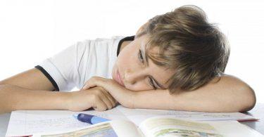 Schlechte Noten – Welcher Verhaltenstyp ist Ihr Kind?