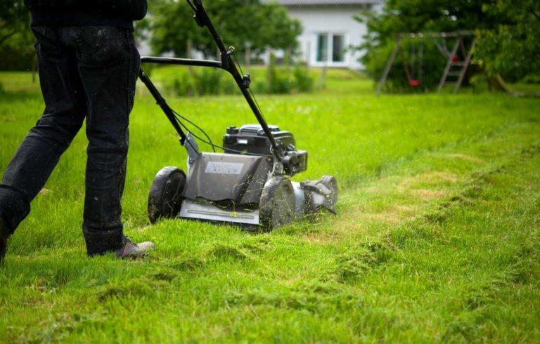 Rasenpflege im Frühjahr: Auf Wärme kommt es an